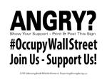 OccupyWallStJT-01